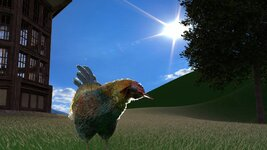 504080_bg_chicken_death_03.jpg
